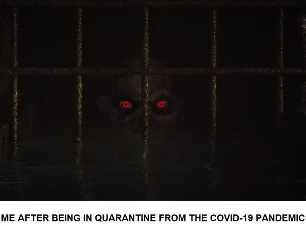 COVID-19 Meme.jpg