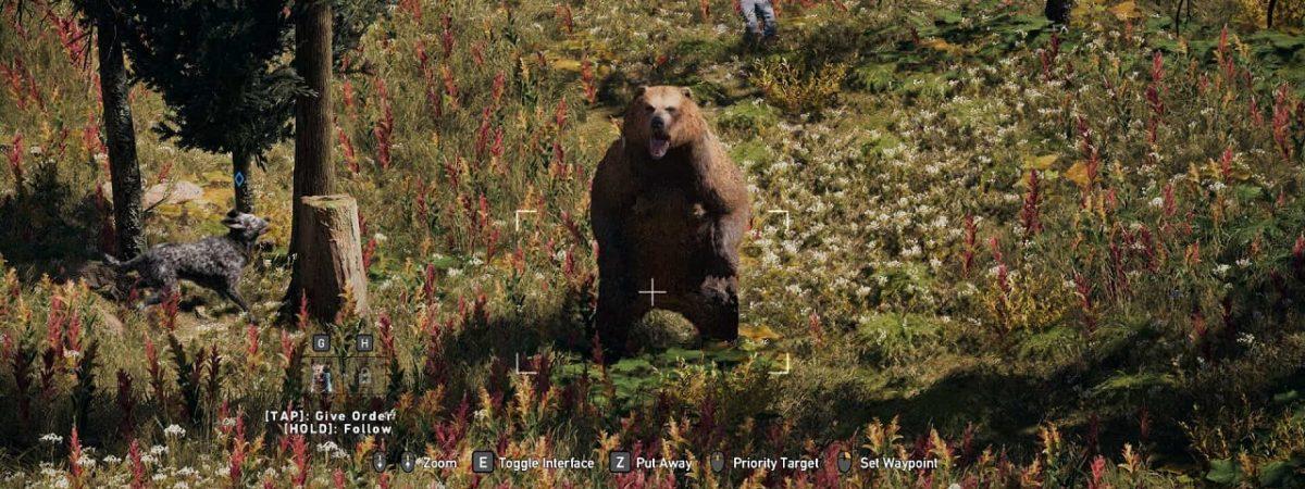 black bear location far cry 5