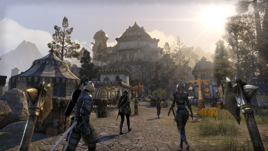 Fans Are Angry at Bethesda for Mistakenly Adding Red Shell to ESO