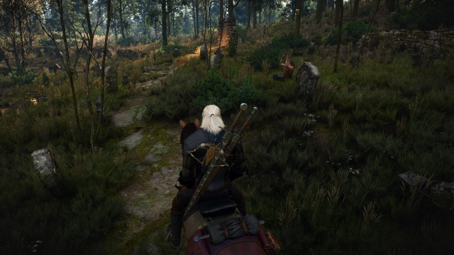 The New Witcher 3 Mod Overhauls Terrain Textures in White Orchard
