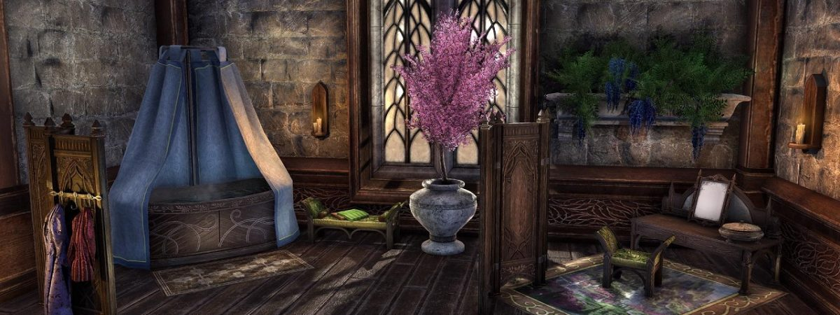 Elder Scrolls: Online Update 20 Adds New Home Decorating Tools