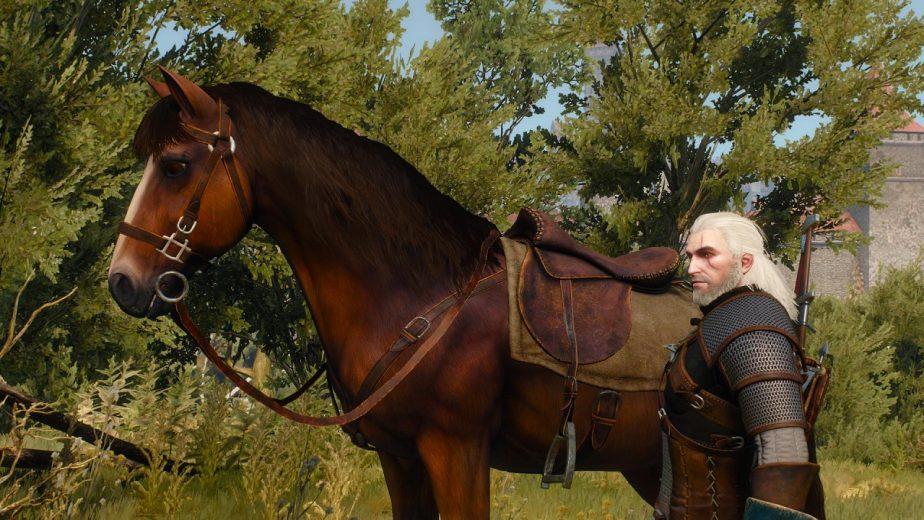 There Were Designs to Let Roach Come Aboard Geralt's Boats