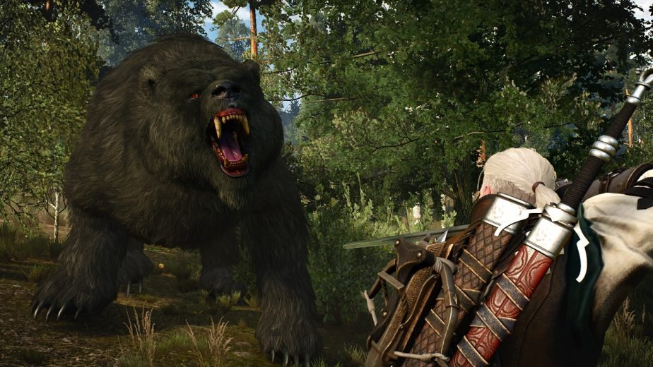 Witcher Author Currently Engaged in Legal Disputes by CD Projekt