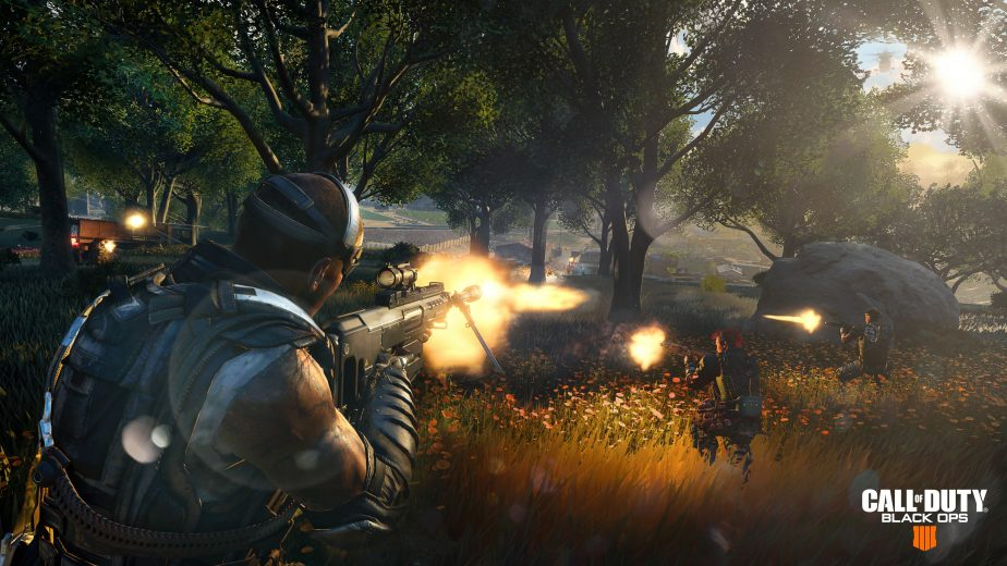 Call of Duty Black Ops 4's Blackout mode won't have a hardcore playlist at launch.