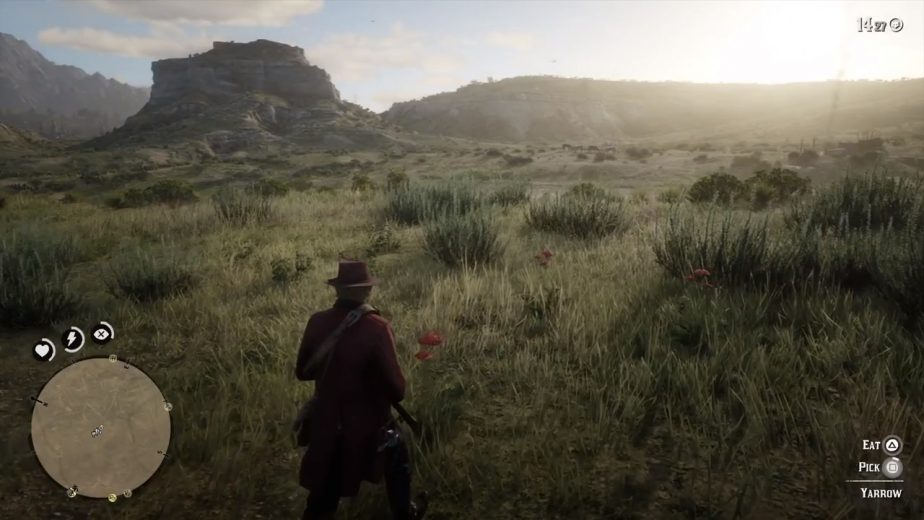 Keep an eye out for the Yarrow plant's distinct red leaves in Red Dead Redemption 2.