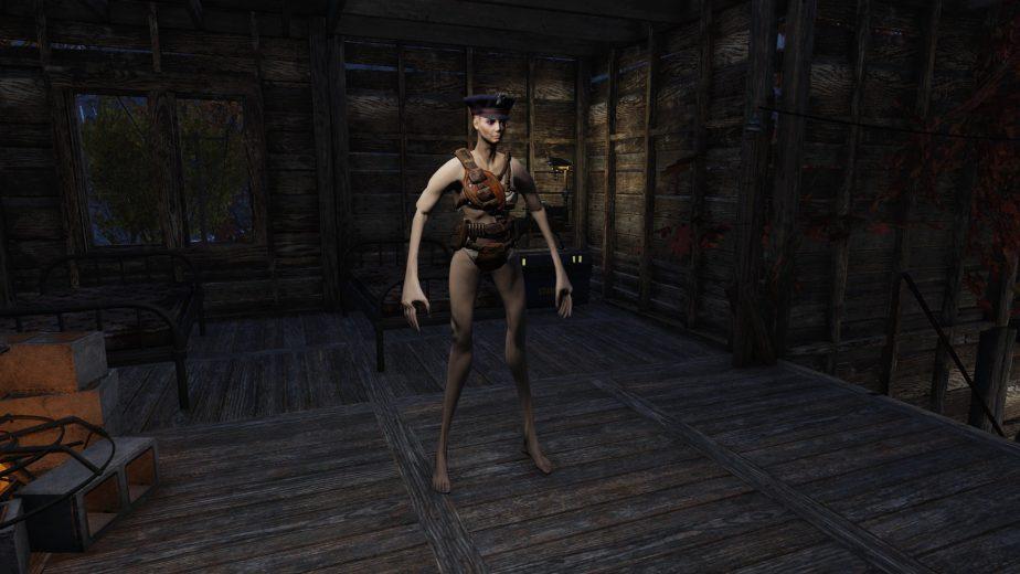 Fallout 76 Power Armor Glitch