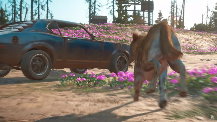 Far Cry New Dawn Timber Fang for Hire 2
