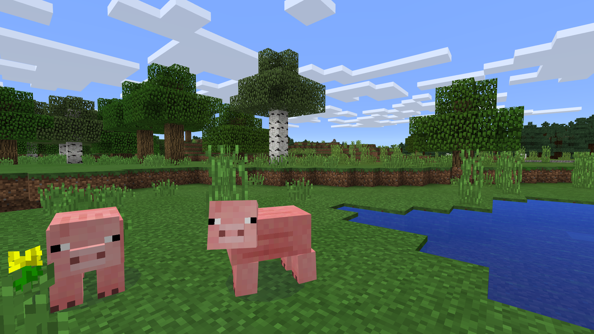 All references to Notch have been removed from Minecraft